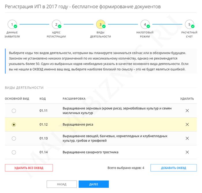 Регистрация ип инструкция коды за неподачу декларации 3 ндфл