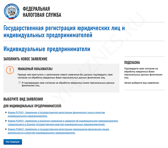 Регистрация ип онлайн ифнс программы по сдаче отчетности в электронной форме