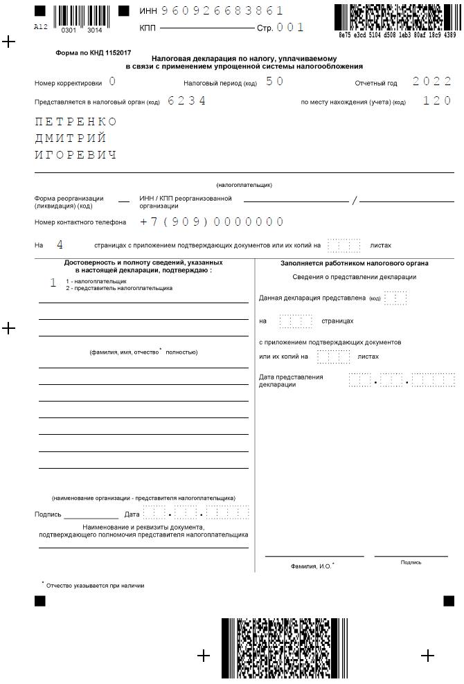 Образец заполнения декларации УСН при закрытии ИП, титульный лист